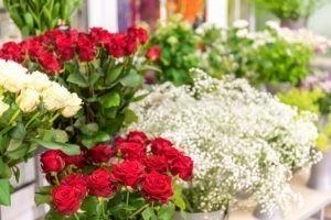 Floristik: Schnittblumen wie Rosen gibt es bei Wassenaar.