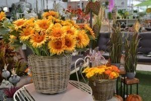 Floristik zu jeder Jahreszeit passend gibt es bei Wassenaar.