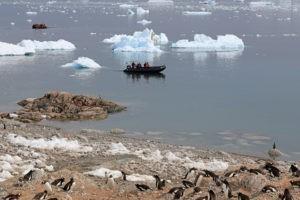 Antarktis Kreuzfahrt Bremen: Touristen werden mit Zodiacs, Schlauchbooten, an Land gebracht. Pinguinkolonie an der Küste.