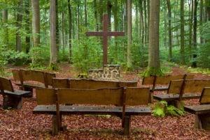 Traueraltar mit Bänken mitten in einem Trauerwald. Hier werden Abschiedsfeiern bei einer Waldbestattung gehalten.